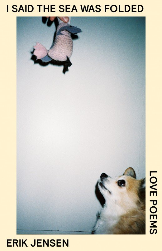 cream border with photograph of a small orange and white dog looking up at a toy being held above frame